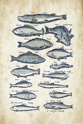 Fantasy Digital Art - Fish Species Historiae Naturalis 08 - 1657 - 29 by Aged Pixel