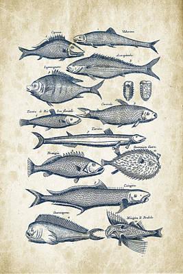 Marine Fish Digital Art - Fish Species Historiae Naturalis 08 - 1657 - 33 by Aged Pixel