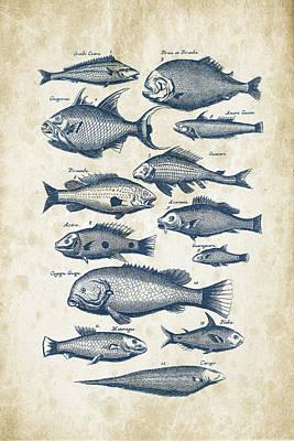 Animals Digital Art - Fish Species Historiae Naturalis 08 - 1657 - 34 by Aged Pixel
