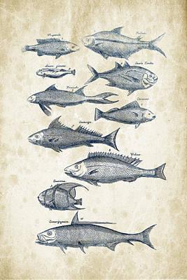 Animals Digital Art - Fish Species Historiae Naturalis 08 - 1657 - 35 by Aged Pixel
