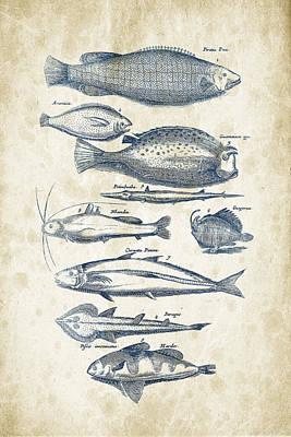 Animals Digital Art - Fish Species Historiae Naturalis 08 - 1657 - 36 by Aged Pixel