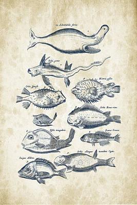 Fantasy Digital Art - Fish Species Historiae Naturalis 08 - 1657 - 44 by Aged Pixel