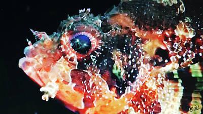 Digital Art - Fish Story by CHAZ Daugherty