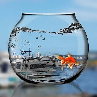 Digital Art - Fishbowl by Vijay Sharon Govender