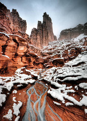 Photograph - Fisher Towers by Whit Richardson