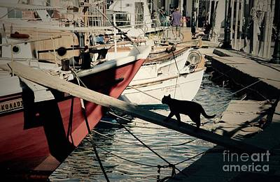 Fisherman's Cat  Art Print