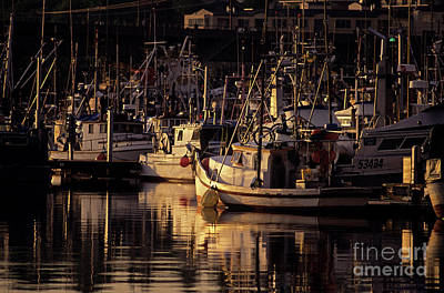 Photograph - Fisherman's Terminal  by Jim Corwin