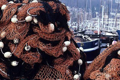 Photograph - Fisherman's Terminal Nets by Jim Corwin