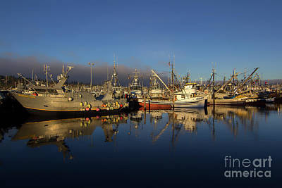 Photograph - Fisherman's Terminal by Sonya Lang