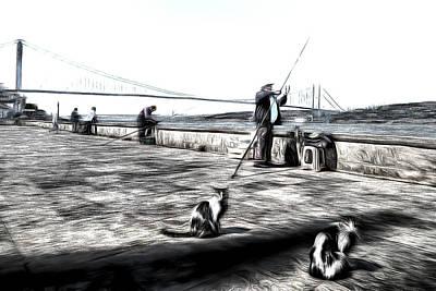 Fishermen And Cats Istanbul Art Art Print