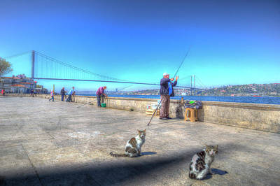 Fishermen And Cats Istanbul Art Print by David Pyatt