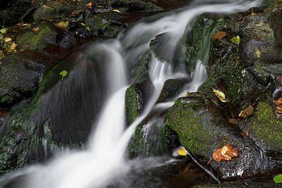 Photograph - Fishhawk Cascade by Robert Potts