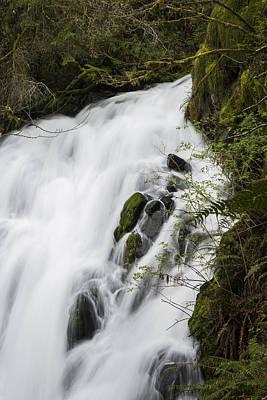 Photograph - Fishhawk Falls In The Spring by Robert Potts