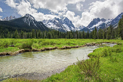 Photograph - Fishhook Creek Meadow by Aaron Spong