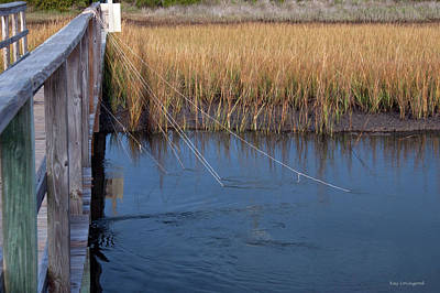 Photograph - Fishin' Lines by Kay Lovingood
