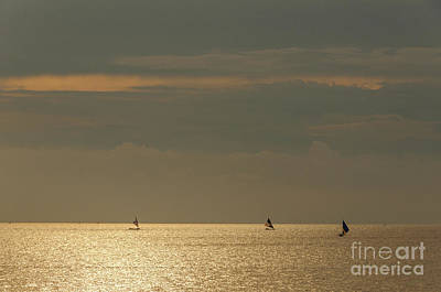 Photograph - Fishing At Dusk by Werner Padarin