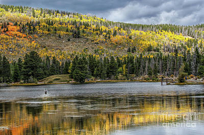 Photograph - Fishing At Sprague Lake by Lynn Sprowl