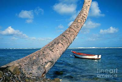 Fishing Boat And Palm Trunk Art Print by Thomas R Fletcher