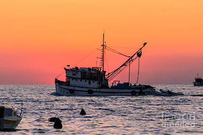 Night Fishing Digital Art - Fishing Boat At Dusk, Rovinj by Sinisa CIGLENECKI