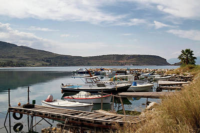 Photograph - Fishing Boat Harbour by Shirley Mitchell
