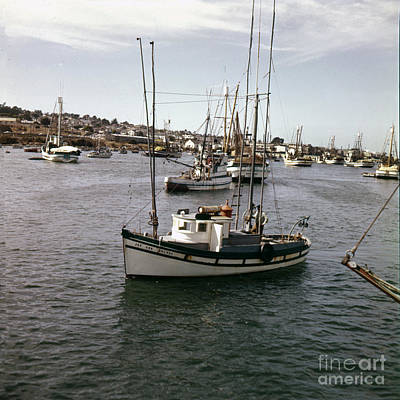 Photograph - Fishing Boat Joy Ann No. 28l424 In Monterey Harbor Circa 1955 by California Views Archives Mr Pat Hathaway Archives