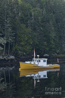 Photograph - Fishing Boat Moored On The Water by Dan Friend