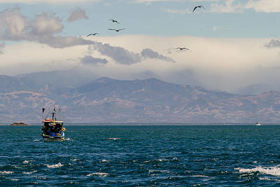 Puravida Photograph - Fishing Boat by Shannon Kunkle