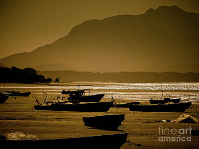 Photograph - Fishing Boats by Camille Pascoe