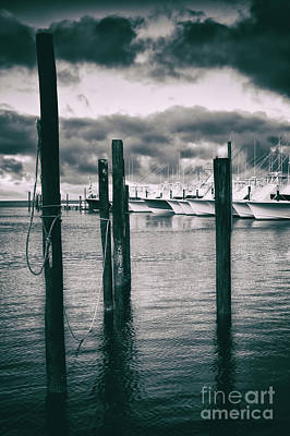 Photograph - Fishing Boats In The Marina Bw by Dan Carmichael