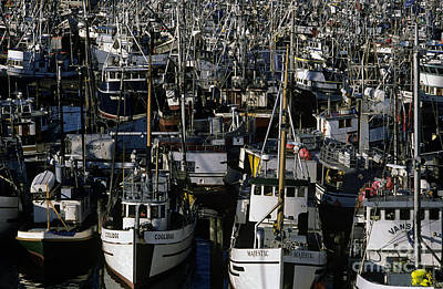 Photograph - Fishing Boats by Jim Corwin