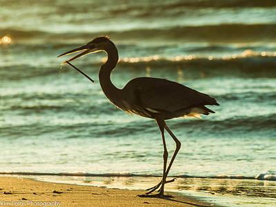 Photograph - Fishing Day  by Kim Loftis