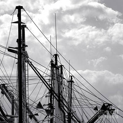 Photograph - Fishing Fleet Flock by Olivier Le Queinec