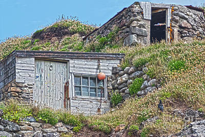 Photograph - Fishing Huts Cape Cornwall by Terri Waters