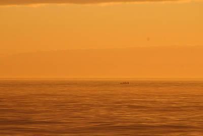 Photograph - Fishing In Orange by Robert Banach