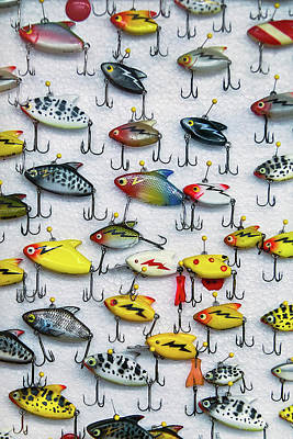 Fishing Lures Print by Garry Gay