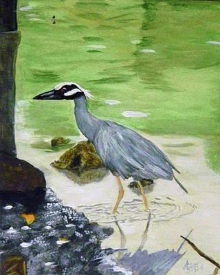 Sea Birds Painting - Fishing Night Heron by WM Gilroy