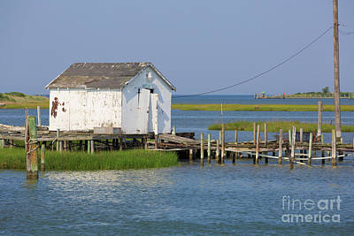 Photograph - Fishing Shanty On Tangier Island In Chesapeake Bay by Louise Heusinkveld