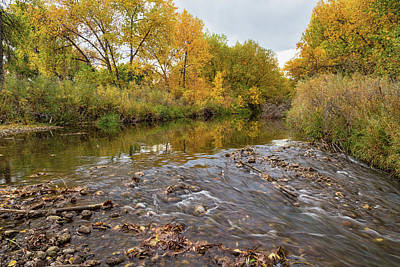 Photograph - Fishing Stream View by James BO Insogna