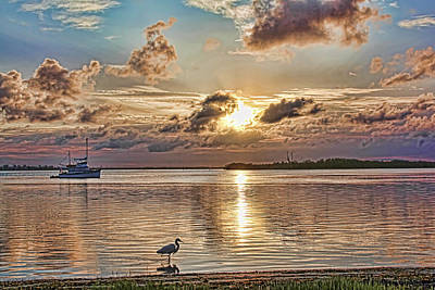 Photograph - Fishing The Shoreline by HH Photography of Florida