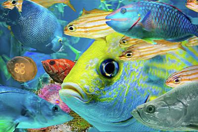 Digital Art - Fishy Collage 02 by Gene Norris