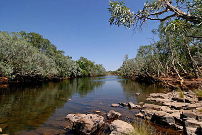 Photograph - Fitzroy River by Tony Brown
