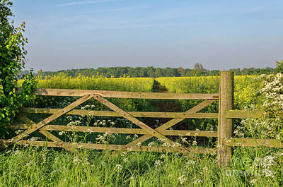 Photograph - Five Bar Gate by Steev Stamford