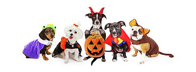 Maltese Photograph - Five Dogs Wearing Halloween Costumes Banner by Susan Schmitz