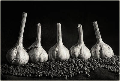 Photograph - Five Garlic And Juniper Berries by Peter V Quenter