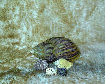 Digital Art - Five Glistered Shells by Kae Cheatham