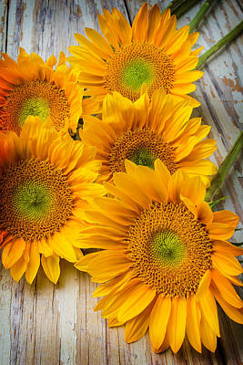 Chip Photograph - Five Moody Sunflowers by Garry Gay