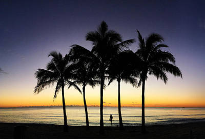 Photograph - Five Palms, An Ocean And A Girl With A Dog. by Andrew Royston