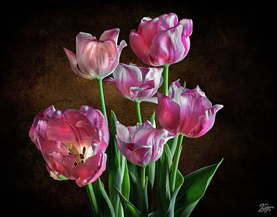 Photograph - Five Pink Tulips by Endre Balogh