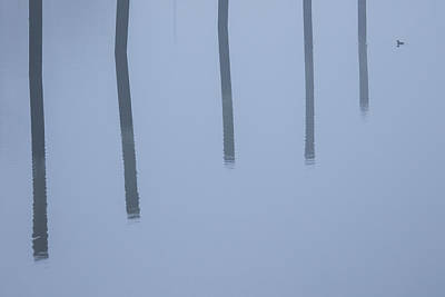 Art Print featuring the photograph Five Poles And A Duck by Karol Livote