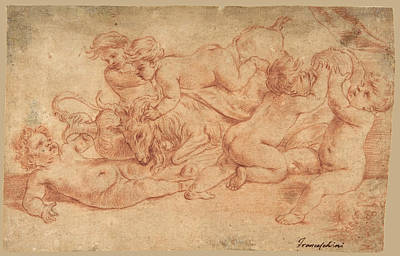 Drawing - Five Putti Playing With A Goat. Bacchanalia by Carlo Cignani